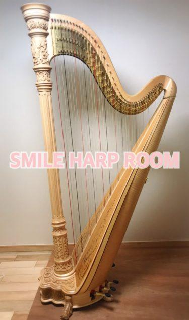 ハープの魅力3選|ハーピストが伝える魅力とメッセージ